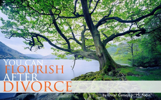 Flourish After Divorce Graphic